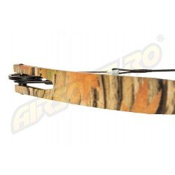 ARC MODEL COMPOUND DIN FIBRA DE STICLA - CAMO