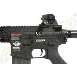 CM16 RAIDER